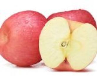 卢司令2.22团品:高山红富士苹果