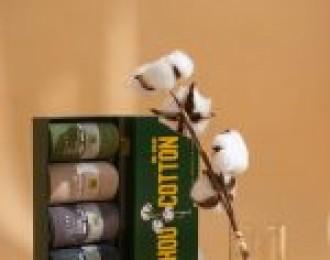 卢司令团购11.6团品TASHOU他瘦 精选特级长绒棉男女袜